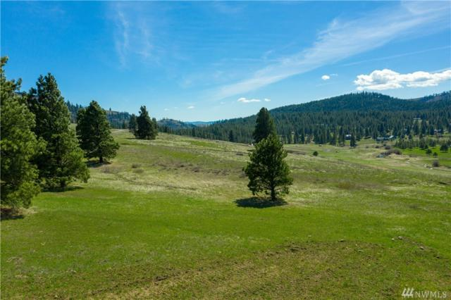 2697 Hidden Valley Rd, Cle Elum, WA 98922 (#1417759) :: Record Real Estate