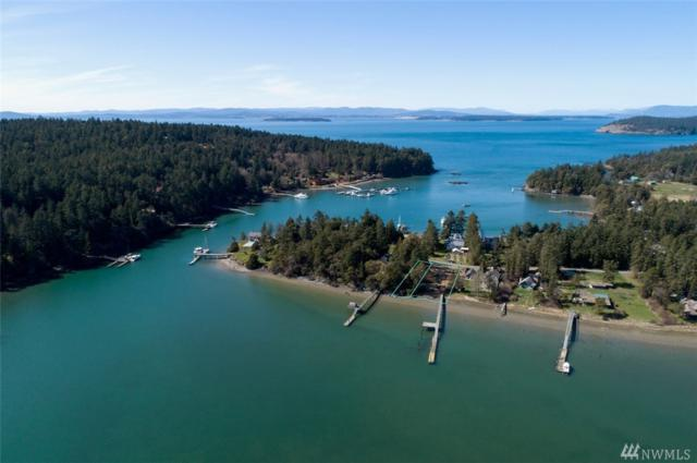 427 Deharo Lane, San Juan Island, WA 98250 (#1429299) :: Real Estate Solutions Group