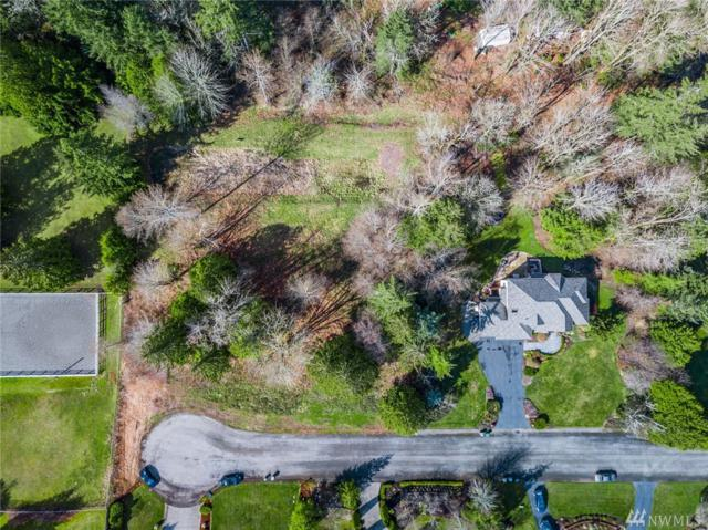 9509 213th Ave NE, Redmond, WA 98053 (#1429707) :: Real Estate Solutions Group
