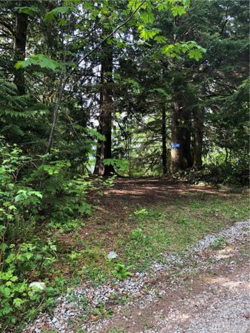 45297 Kamooks Trail 2D21, Concrete, WA 98237 (#1451178) :: Record Real Estate