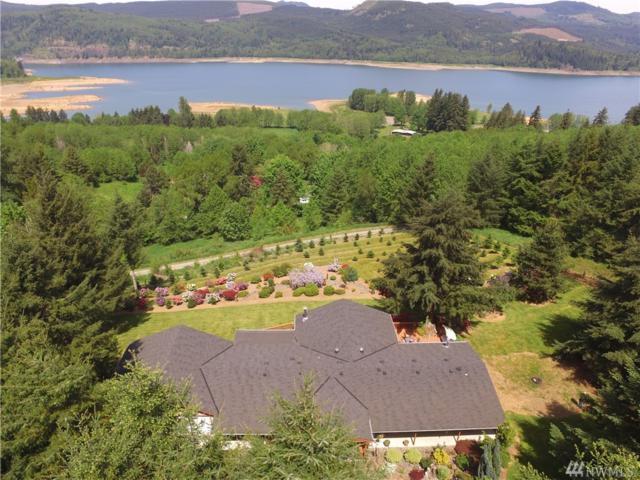 1428 Bear Ridge Rd, Mossyrock, WA 98564 (#1457601) :: Kimberly Gartland Group