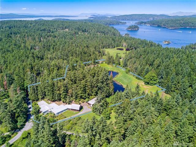 976-1014 Ben Nevis Lp, Shaw Island, WA 98286 (#1468068) :: The Kendra Todd Group at Keller Williams