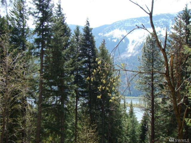 0-Lots A Lake Wenatchee Hwy., Leavenworth, WA 98826 (#1473632) :: Ben Kinney Real Estate Team
