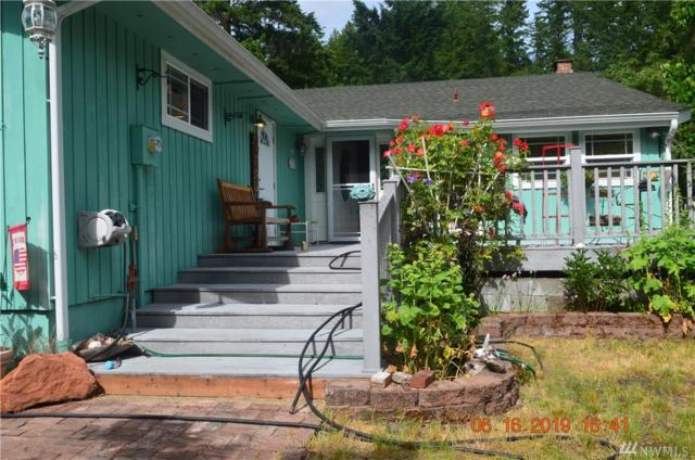 100 N Mt Noyes Place, Hoodsport, WA 98548 (#1475839) :: Canterwood Real Estate Team