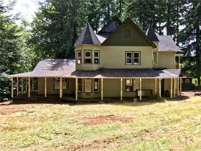 293 Curtis Hill Rd, Chehalis, WA 98532 (#1481003) :: Canterwood Real Estate Team