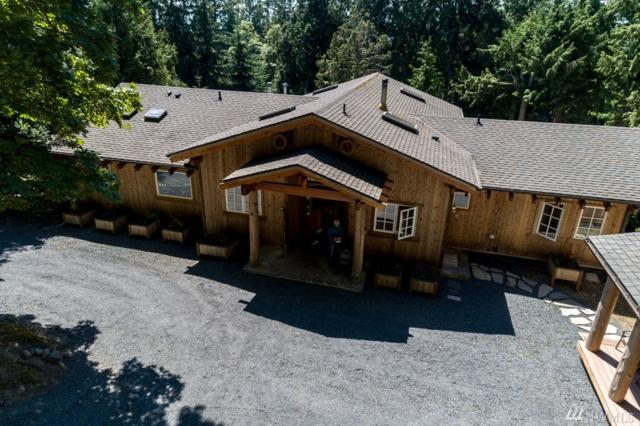 111 Spyglass Hill Rd, Friday Harbor, WA 98250 (#1483135) :: Better Properties Lacey