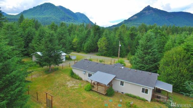 106 Wapiti Trail, Packwood, WA 98361 (#1485044) :: KW North Seattle