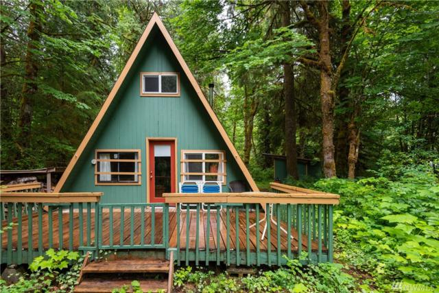 24627 Clear  Creek  Rd, Darrington, WA 98241 (#1489859) :: Real Estate Solutions Group