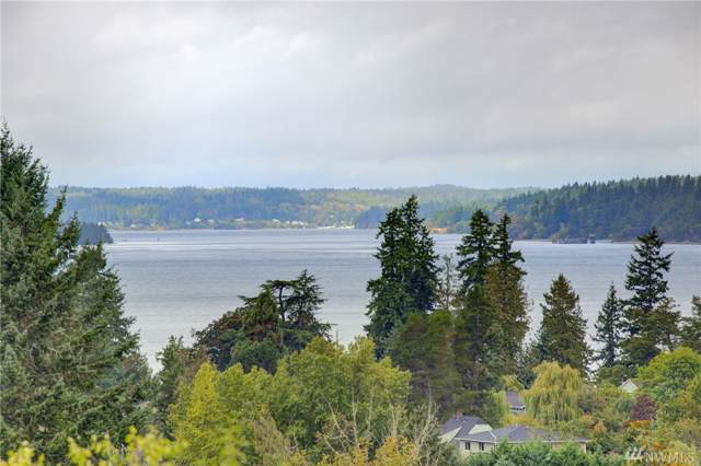 902 Rowell St, Steilacoom, WA 98388 (#1506138) :: Better Properties Lacey