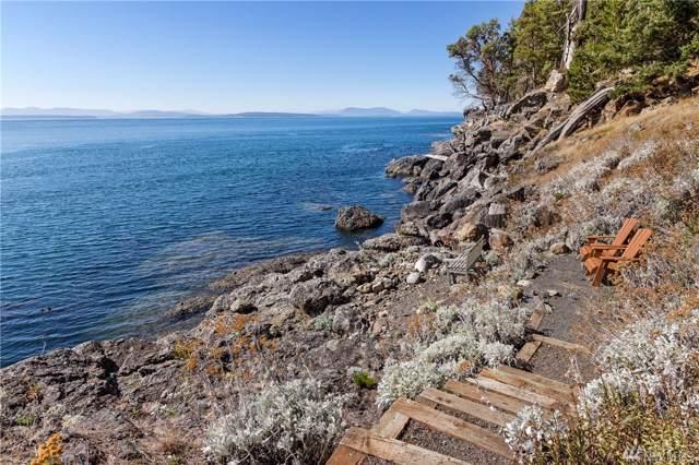 681 Smugglers Cove Rd, San Juan Island, WA 98250 (#1512155) :: Chris Cross Real Estate Group