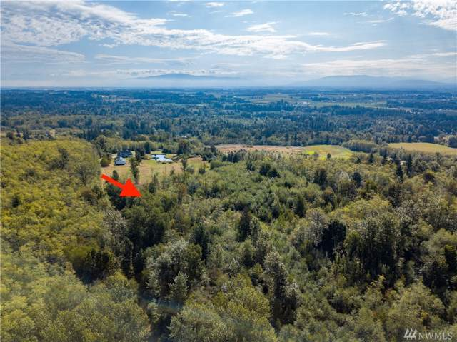0 Stein Hill Lane, Custer, WA 98240 (#1513376) :: Record Real Estate