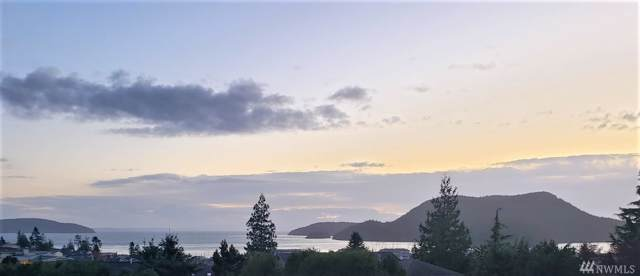 1606 Tartan Place, Anacortes, WA 98221 (#1527969) :: Real Estate Solutions Group