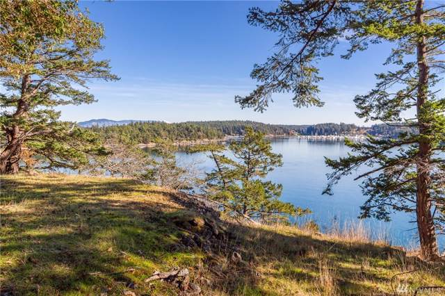 7 Roche Harbor Shore, Henry Island, WA 98250 (#1533829) :: Capstone Ventures Inc