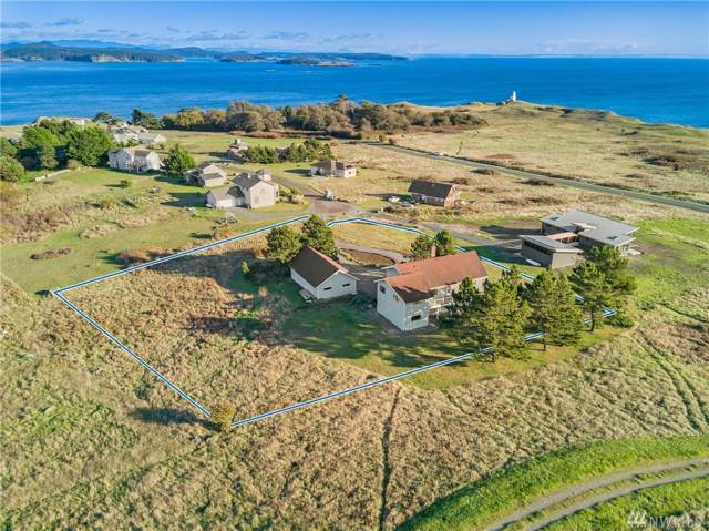 342 Lighthouse Lane, San Juan Island, WA 98250 (#1536848) :: Costello Team