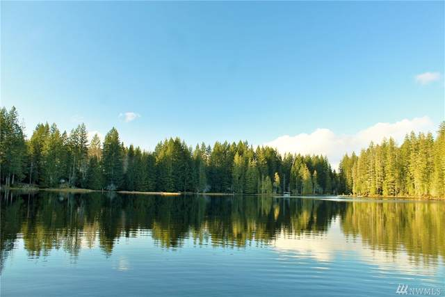 101010 NE Lake Christine Rd, Belfair, WA 98588 (#1584048) :: Engel & Völkers Federal Way