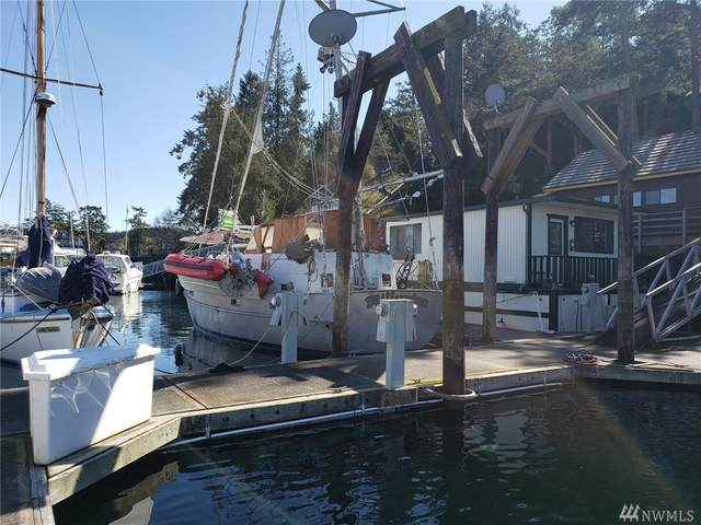620 Warbass Wy #1, Friday Harbor, WA 98250 (#1585628) :: TRI STAR Team | RE/MAX NW
