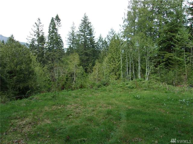 271 Elk Rd, Brinnon, WA 98320 (#1594483) :: Real Estate Solutions Group