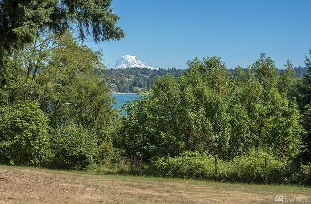 24408 115th Avenue SW, Vashon, WA 98070 (#1595674) :: Better Homes and Gardens Real Estate McKenzie Group