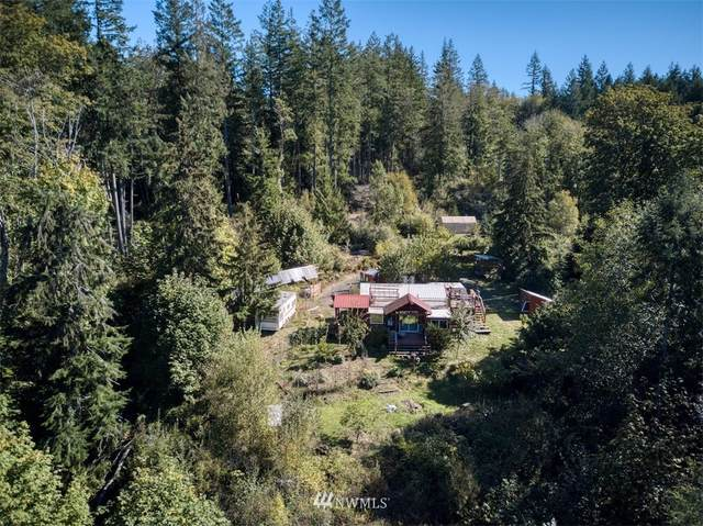 657 Payne Road, Quilcene, WA 98376 (#1668182) :: Alchemy Real Estate