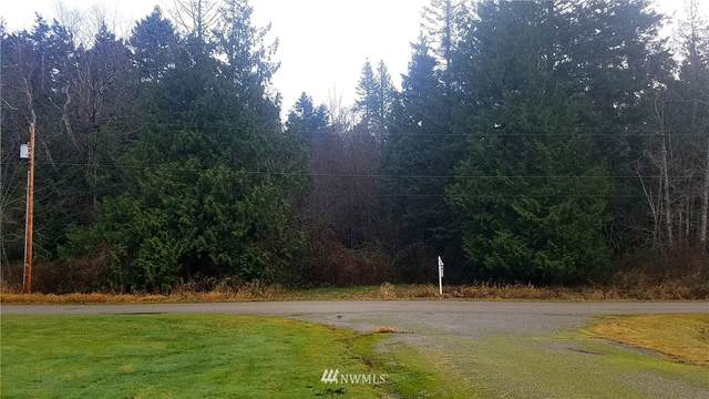 446 Greenwood Drive, Point Roberts, WA 98281 (#1711081) :: Better Properties Real Estate
