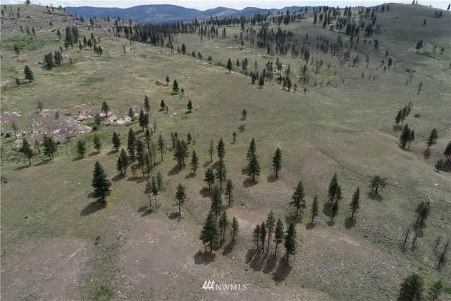 0 Omak Mountain Road, Omak, WA 98841 (#1713926) :: The Kendra Todd Group at Keller Williams