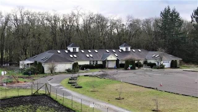 4711 176th Avenue SW, Rochester, WA 98579 (#1723700) :: Ben Kinney Real Estate Team