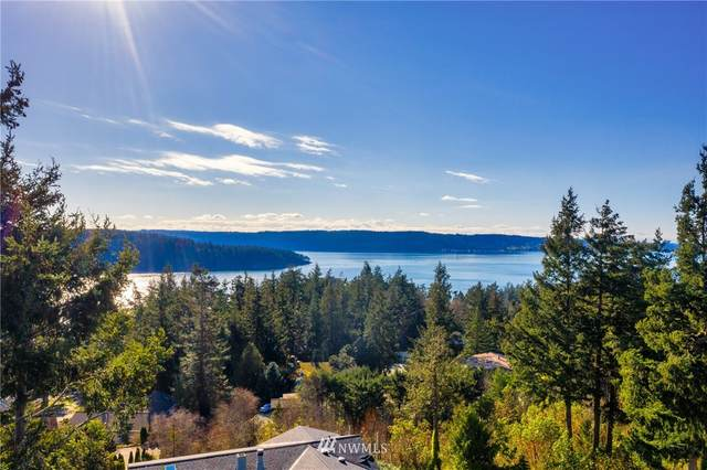 671 Muckleshoot Circle, La Conner, WA 98257 (#1725279) :: Icon Real Estate Group