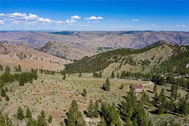 7136 Union Valley Rd, Chelan, WA 98816 (#1787064) :: Home Realty, Inc