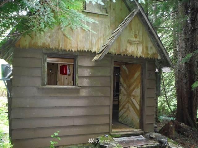 28 Denny Creek Road, Snoqualmie Pass, WA 98068 (#1793732) :: Neighborhood Real Estate Group