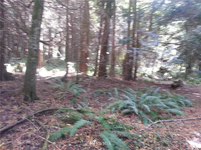 0 74th Avenue NW, Stanwood, WA 98292 (#1819665) :: The Snow Group