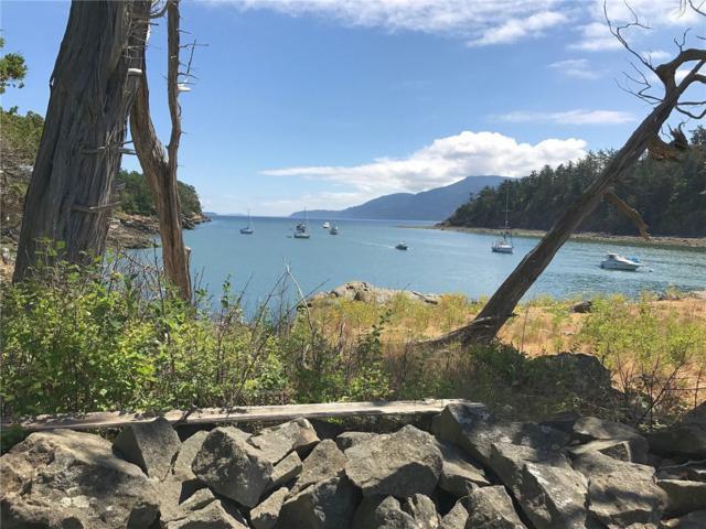 0 Harndon Island, Orcas Island, WA 98245 (#402987) :: Ben Kinney Real Estate Team