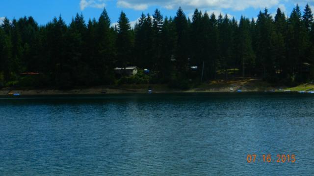 22 Lakeshore Dr, Tahuya, WA 98588 (#820269) :: Ben Kinney Real Estate Team