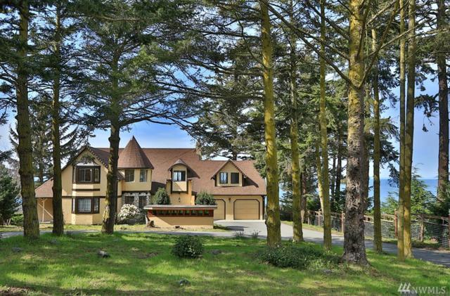 1399 W Beach Rd, Oak Harbor, WA 98227 (#914522) :: Ben Kinney Real Estate Team