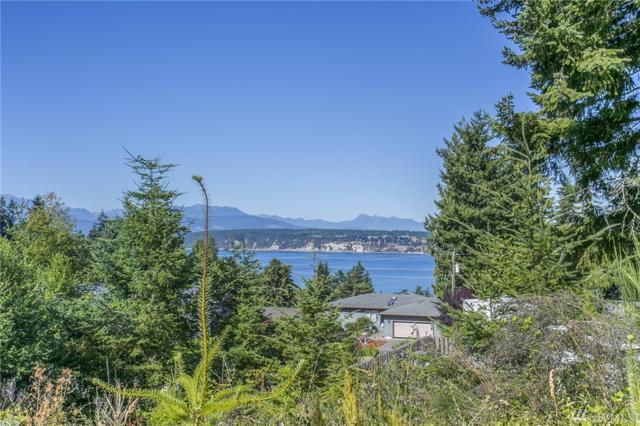 3232 Cape George Rd, Port Townsend, WA 98368 (#1019318) :: Homes on the Sound