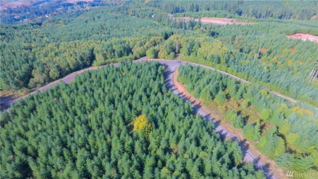 0-Lot L Thimbleberry, Castle Rock, WA 98611 (#1044660) :: Kimberly Gartland Group