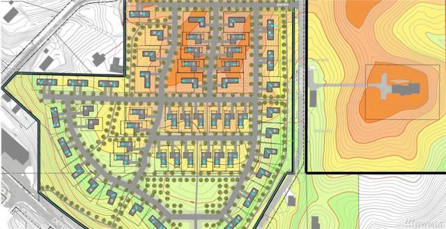 0 Larson Rd, Peshastin, WA 98847 (#1074197) :: Kimberly Gartland Group
