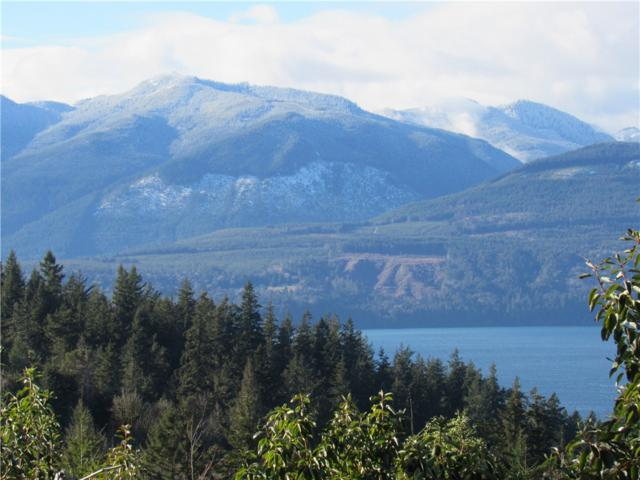 37-.69acres Coyle Rd, Quilcene, WA 98376 (#11106) :: Northern Key Team
