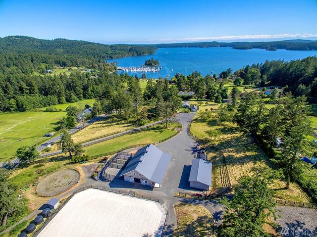 4074 Crow Valley Rd, Orcas Island, WA 98245 (#1115212) :: Ben Kinney Real Estate Team