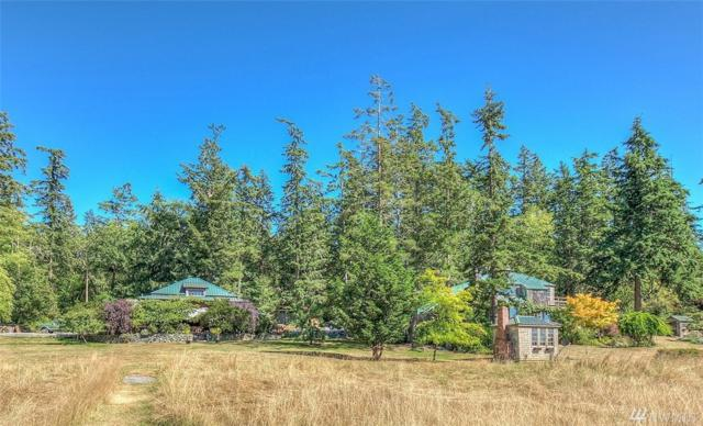 253 Payton Lane, Orcas Island, WA 98245 (#1116619) :: Kimberly Gartland Group