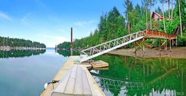 17 Quiet Place, Brinnon, WA 98320 (#1171626) :: Homes on the Sound
