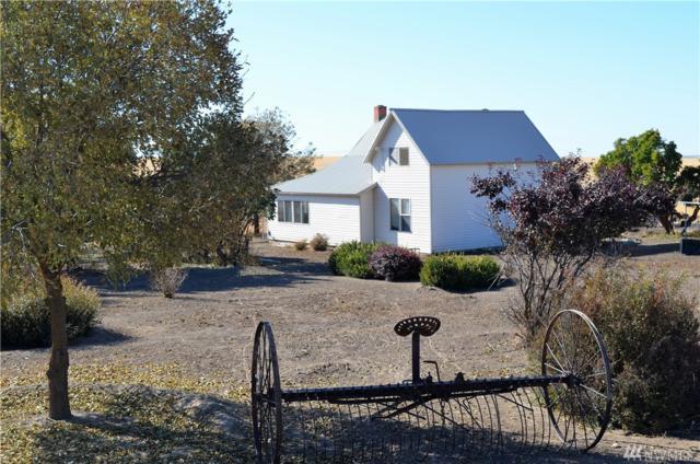 11307 Duck Lake Lamona N, Harrington, WA 99134 (#1194844) :: Ben Kinney Real Estate Team