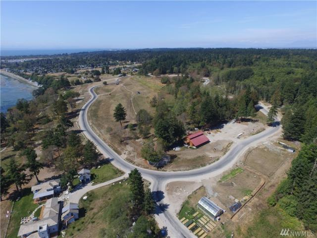2181 Seabright Lp, Point Roberts, WA 98281 (#1231571) :: Tribeca NW Real Estate