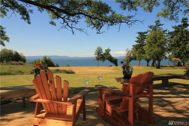 2165 Seabright Lp, Point Roberts, WA 98281 (#1231591) :: Tribeca NW Real Estate