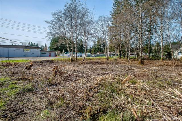 0 School Rd, Aberdeen, WA 98520 (#1260429) :: TRI STAR Team | RE/MAX NW