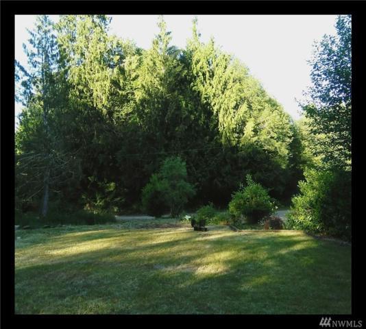 151 W Thunderbird Dr, Elma, WA 98541 (#1270976) :: Keller Williams Realty Greater Seattle