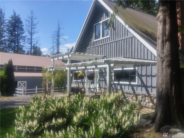 25722 SE Tiger Mountain Rd, Issaquah, WA 98027 (#1287061) :: NW Home Experts