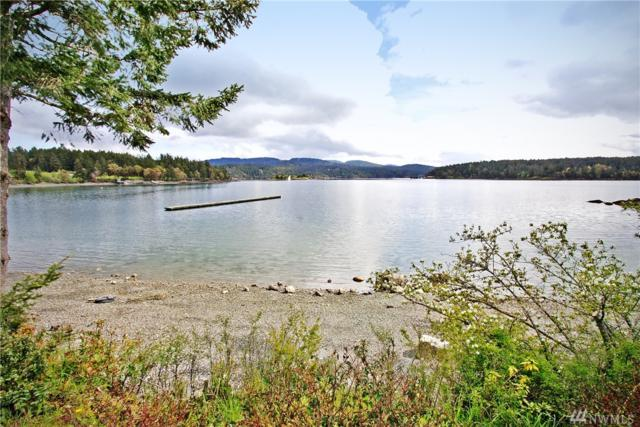 378 Smugglers Cove Rd, Shaw Island, WA 98286 (#1290811) :: Real Estate Solutions Group