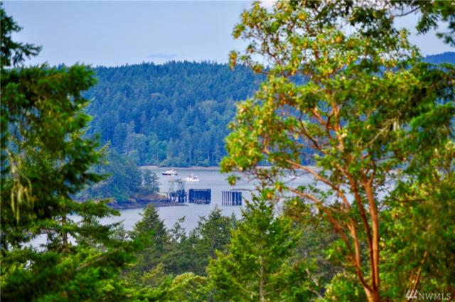 522 Foster Point Rd, Orcas Island, WA 98280 (#1316997) :: Homes on the Sound