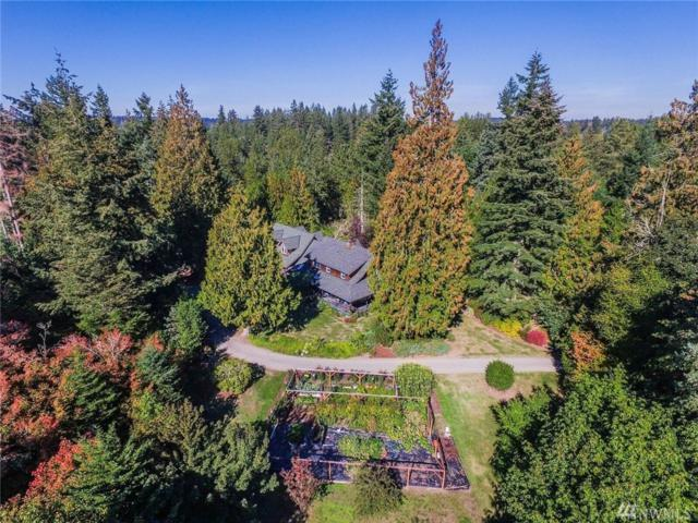 9737 138th Ave SE, Rainier, WA 98576 (#1324020) :: Better Homes and Gardens Real Estate McKenzie Group