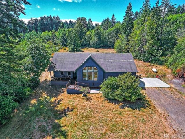 14122 124th Ave Kpn, Gig Harbor, WA 98329 (#1333539) :: Homes on the Sound